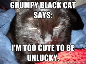 grumpyblkcat
